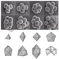 When compressed by a liquid droplet, small groups of colloidal microspheres -- plastic spheres with diameters about one one-hundredth that of a human hair -- pack to form an unusual sequence of structures. At top are packings containing four to eleven spheres, as seen through the scanning electron microscope. At bottom are the polyhedra defined by drawing lines between the centers of touching spheres in each cluster. Some of these polyhedra are familiar structures, such as the tetrahedron (4 spheres) and octahedron (6 spheres), but most of the others -- including the
