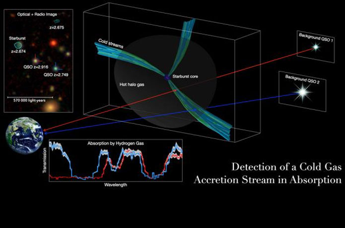 <p>Researchers led by the University of Iowa have detected cosmic pipelines supplying the cold gases necessary for the formation of massive galaxies and the creation of stars. It is the first direct observational evidence of the phenomenon in the early universe.</p>